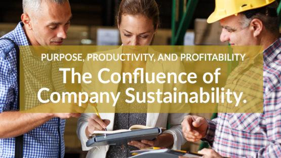 Purpose, Productivity, and Profitability –  The Confluence of Company Sustainability.